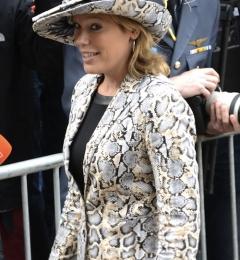 Prinsjesdag 2013 - Aankomst ParlementariÎrs